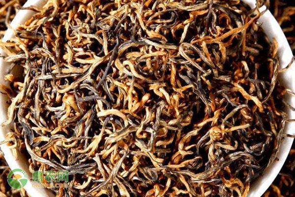 中国哪些茶叶属于红茶图片