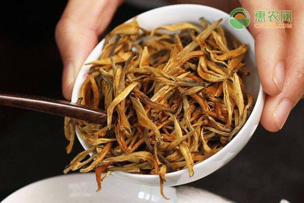 什么茶叶属于红茶图片