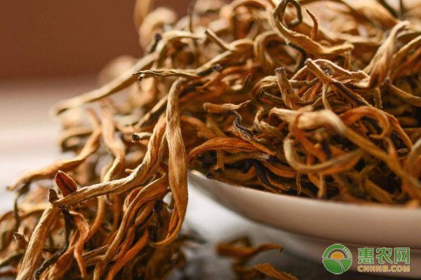 红茶包括哪些茶叶图片