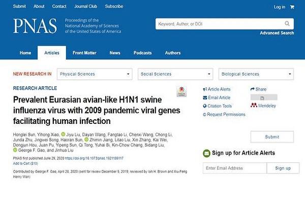 中国研究人员发现新型猪流感病毒是怎么回事?是否有传播风险?