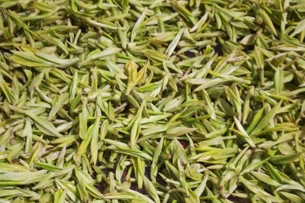 黄金茶多少钱一斤?有哪些功效和作用?