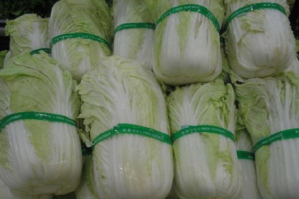 韩国白菜价格暴涨是什么情况?到底有多贵?