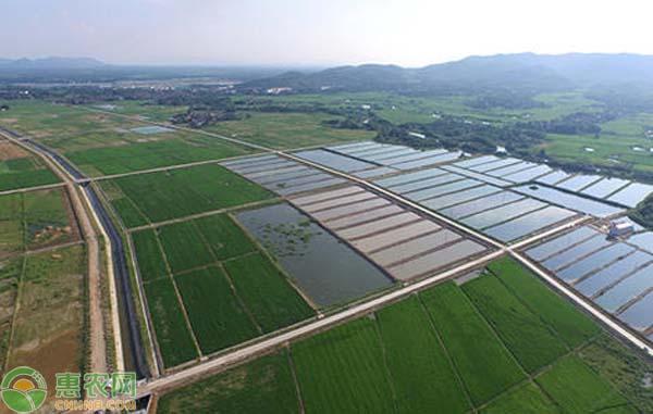 农业农村部关于进一步提高高标准农田建设补助标准管理体制的答复
