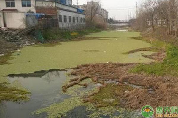 农业农村部关于完善农村污水处理系统考核方式和内容的建议答复