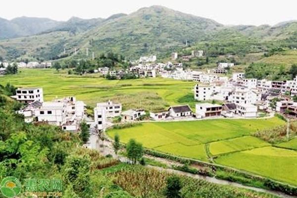 农业农村部关于进一步推进农村人居环境整治工作的答复