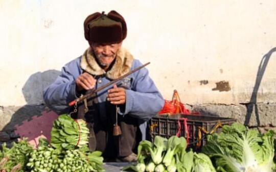 蔬菜价格涨跌幅度较大,后期走势如何?