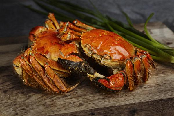 10月大闸蟹价格多少钱一斤?大闸蟹价格为何跌这么快?