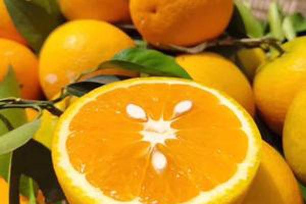 水果越酸,维C含量越高?维C含量高的水果有哪些?