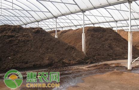 田源生物肥料的鸡粪是如何发酵的?发酵方法总结