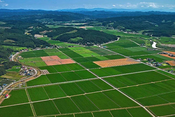 农村包地100亩地国家补助多少?需要什么条件?