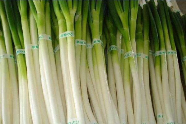 2021年什么蔬菜价格高?2021年种植什么蔬菜前景好?