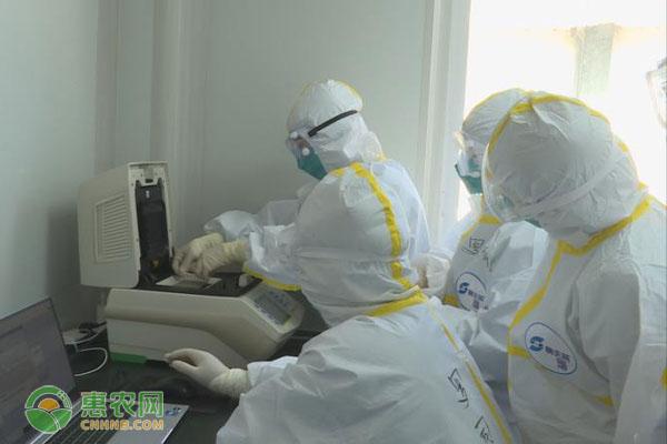农村地区防疫如何做?卫健委专家提出六点措施