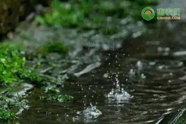 谷雨节气的含义是什么?天气有何特点?