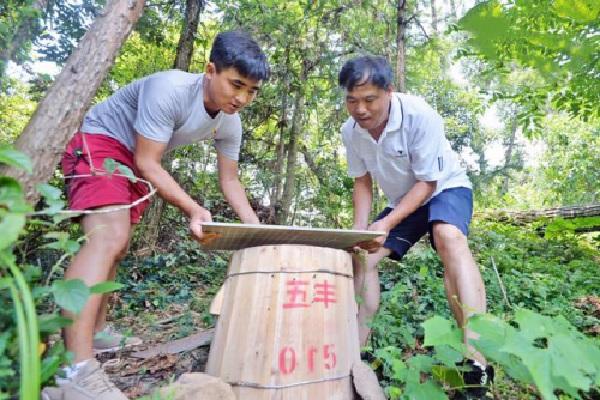 惠农网助力沅陵农产品出山出村 大学生成了苗寨致富带头人