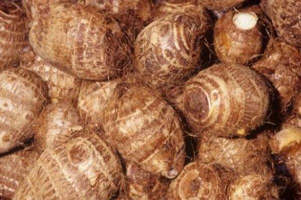 芋头的产地在哪?芋头和红薯有什么区别?
