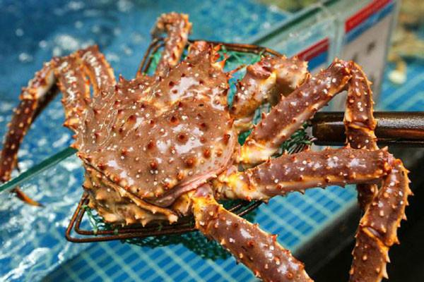 帝王蟹产地在哪里?帝王蟹和皇帝蟹的区别是什么?