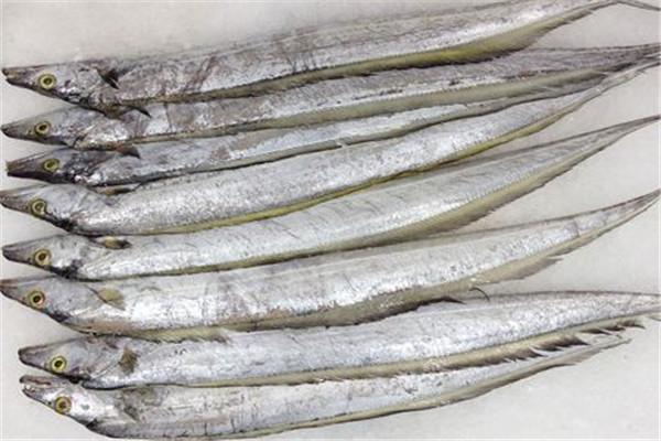 山東帶魚主要分布在哪?帶魚怎么做好吃?