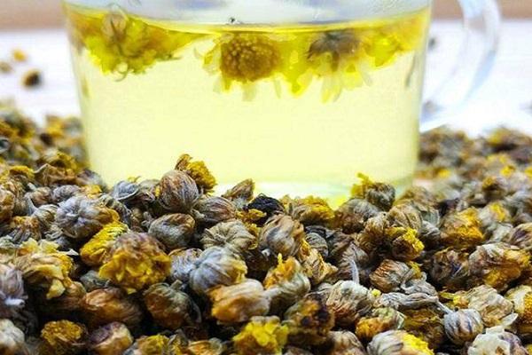哪種菊花泡茶喝最好?