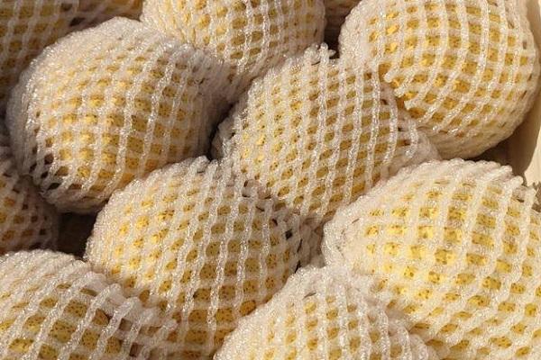 黃色的梨子品種有哪些?
