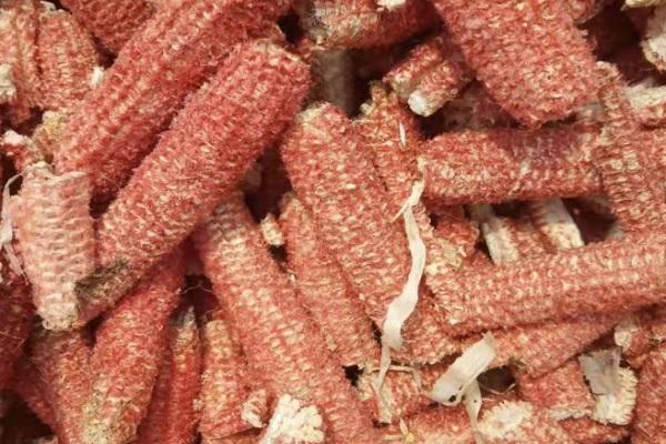 2021玉米芯多少錢一噸?玉米芯有哪些用途?