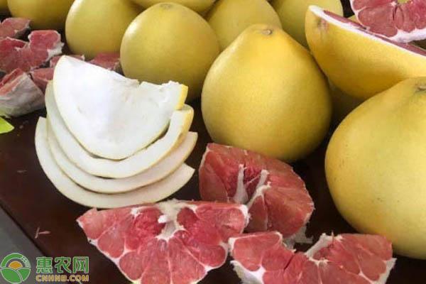 不同蜜柚颜色有何特点?
