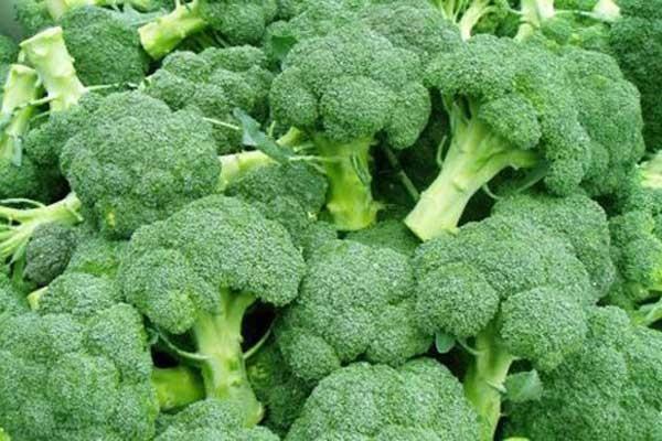 菜比肉贵是怎么回事?影响蔬菜价格的因素有哪些?
