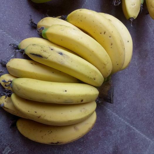 长泰县台湾芭蕉 八成熟 60 - 70斤