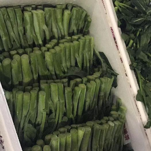 廣州廣州芥蘭 1~2cm