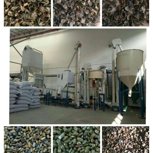 保定徐水区荞麦壳