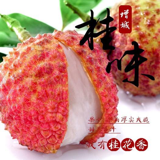 广州增城区桂味荔枝 2cm
