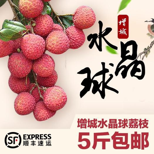 广州增城区水晶球荔枝 2cm