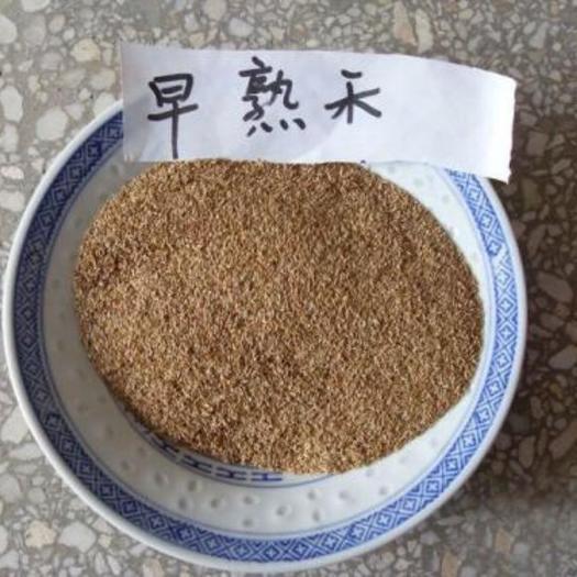 济宁嘉祥县护坡草种子