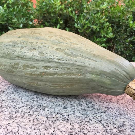 北京贵族南瓜 2~4斤 长条形