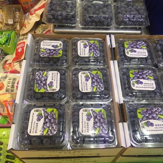 安慶懷寧縣奧尼爾藍莓 鮮果 15mm以上