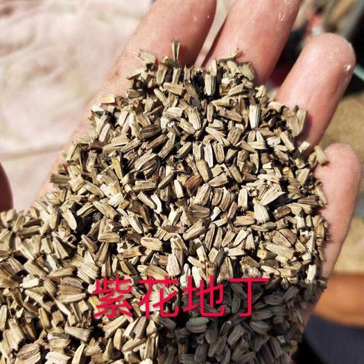 苏州吴中区紫花地丁