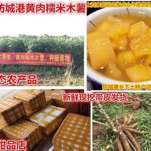 防城港防城區黃心木薯