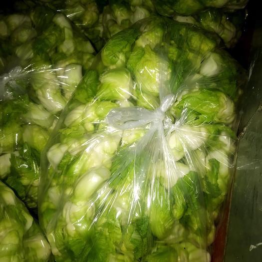 绵阳安州区四川儿菜 0.5斤以下