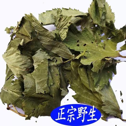 玉林玉州區甜茶