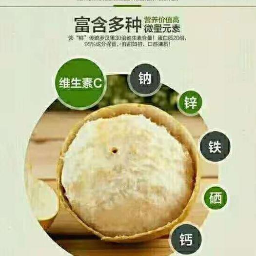 桂林七星区龙江罗汉果 2 - 3两