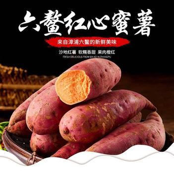 六鳌沙地红心红薯大果精品彩箱包装包邮,现挖现发