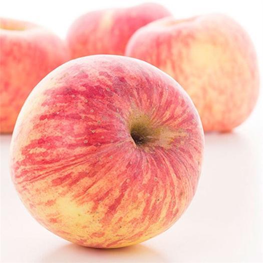 阿克苏市 正宗阿克苏冰糖心苹果 阿克苏产地直发支持一件代发包邮八斤十斤
