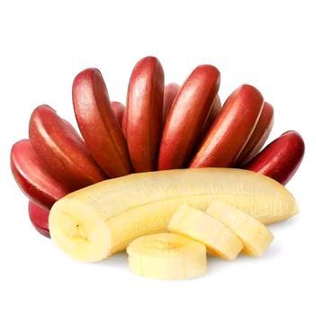 红香蕉 【秒杀】广西 5斤/3斤精品果代发 对接平台社区微电商