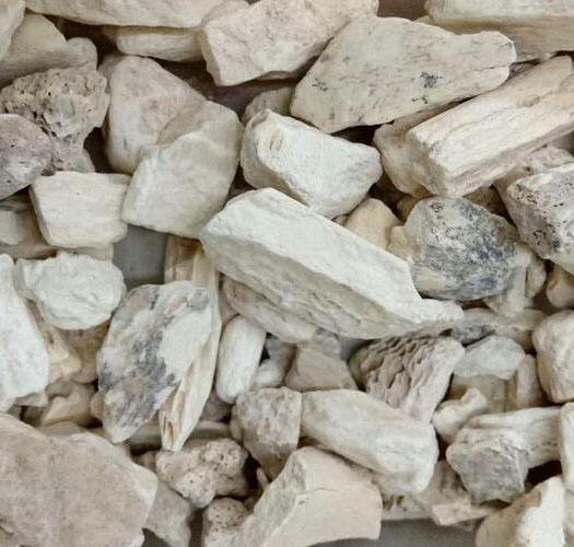 保定安國市 龍骨,常年經營多種礦石類中藥材,品質保證