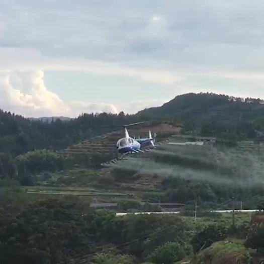 湖南省株洲市芦淞区无人机农药喷洒 R44真人直升机农林业喷洒防护,快速高效