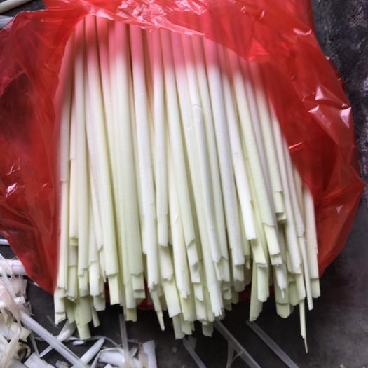 微山县 蒲菜  大量供应