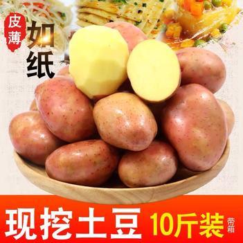 新鲜土豆现挖 促销价 小土豆特惠装