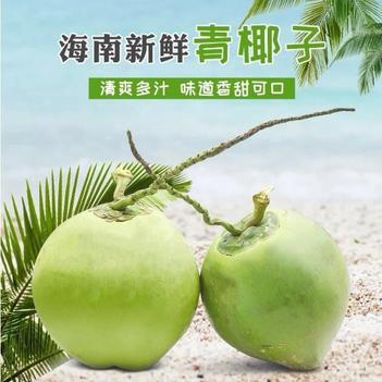 【特价包邮】椰青 海南椰子 带皮椰青 纯天然椰汁 批发包邮