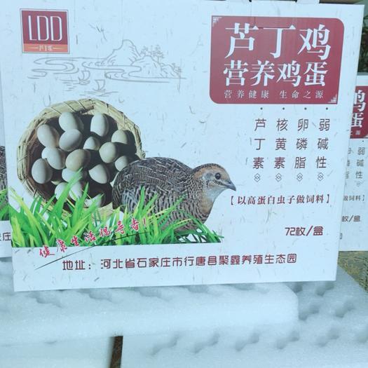 石家庄行唐县桂花雀蛋 活动促销桂花雀芦丁鸡鸟蛋72枚礼盒装