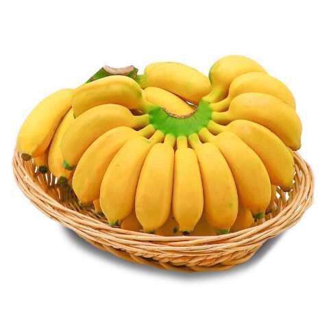 平和县 【特价包邮】小米蕉 海南香蕉 小米蕉 芭蕉 非皇帝蕉 批发