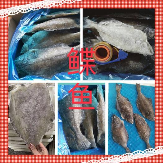 上海 鲽鱼